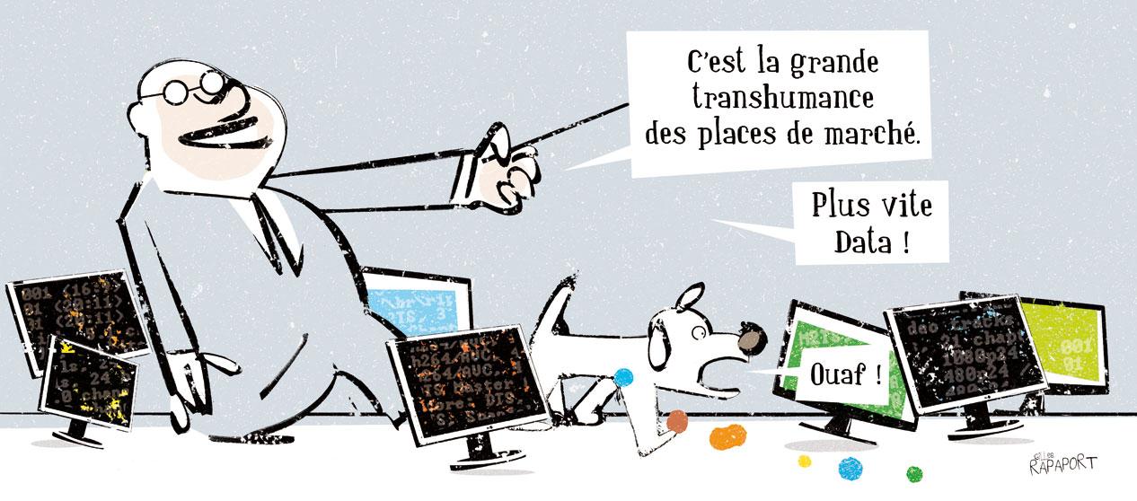 dessin RAPAPORT 14